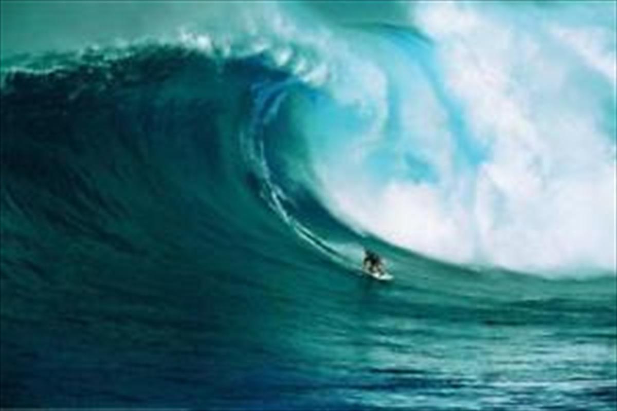 Let's Go Surfing | Merchandise