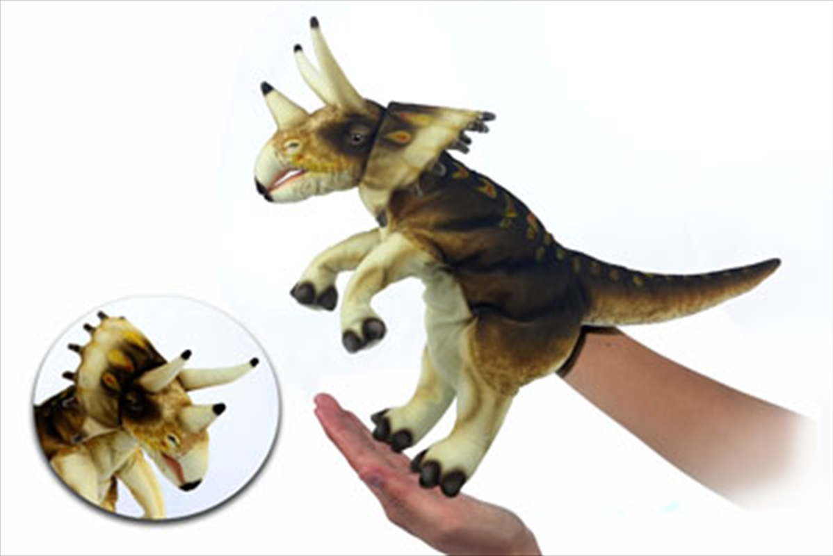 Triceratops Puppet Cream/Brown | Toy