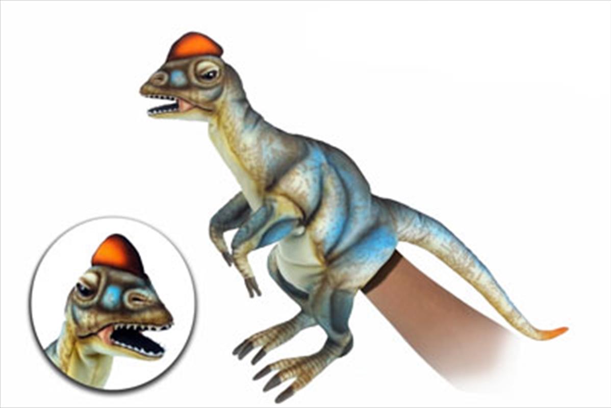 Dilophosaurus Puppet 50cm L   Toy