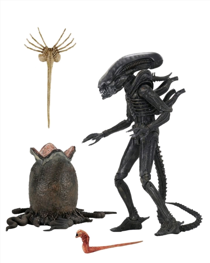 "Alien - Big Chap Ultimate 7"" Scale Action Figure | Merchandise"