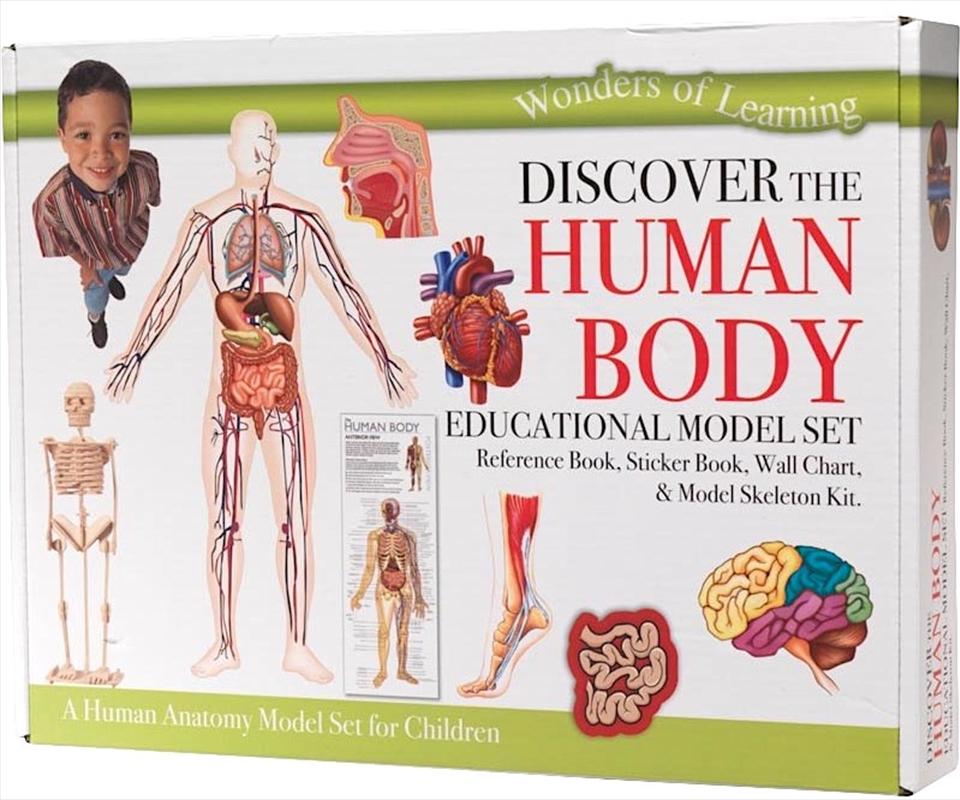 Human Body Model Set | Miscellaneous