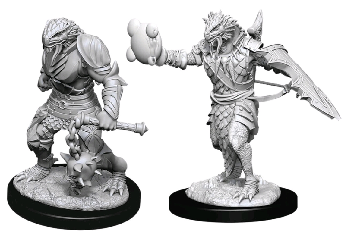 Dungeons & Dragons - Nolzur?s Marvelous Unpainted Minis: Male Dragonborn Paladin | Games