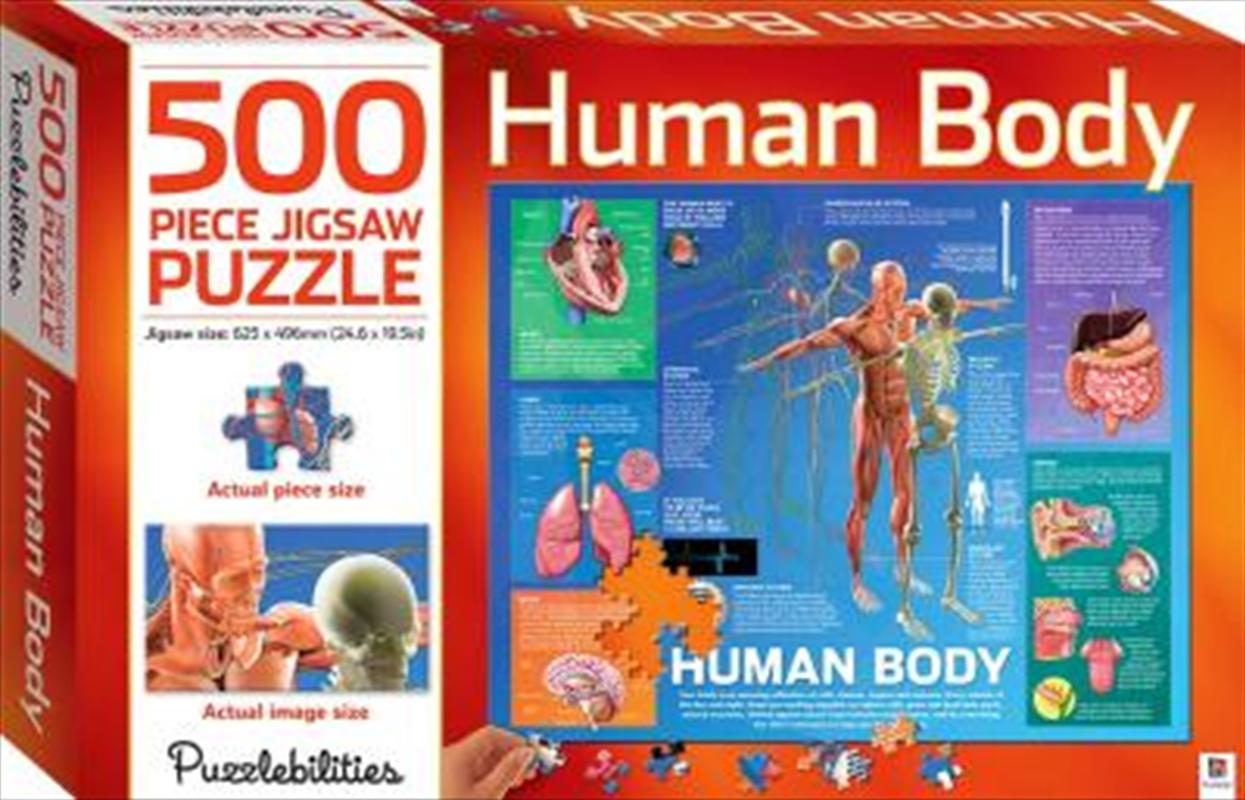 Human Body 500 Piece Jigsaw Puzzle | Merchandise