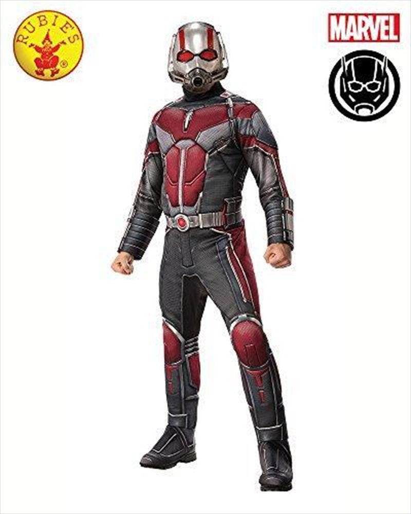 Ant Man Deluxe Adult Costume: Standard   Apparel