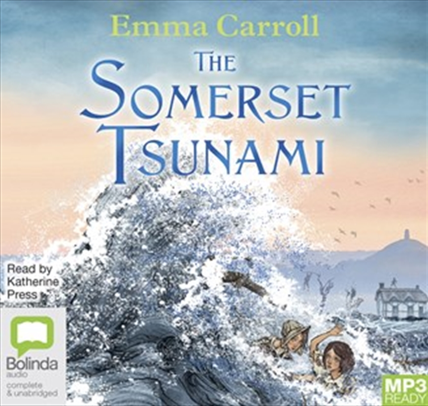 Somerset Tsunami | Audio Book