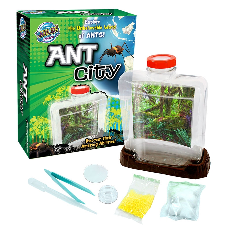 Ant City | Toy