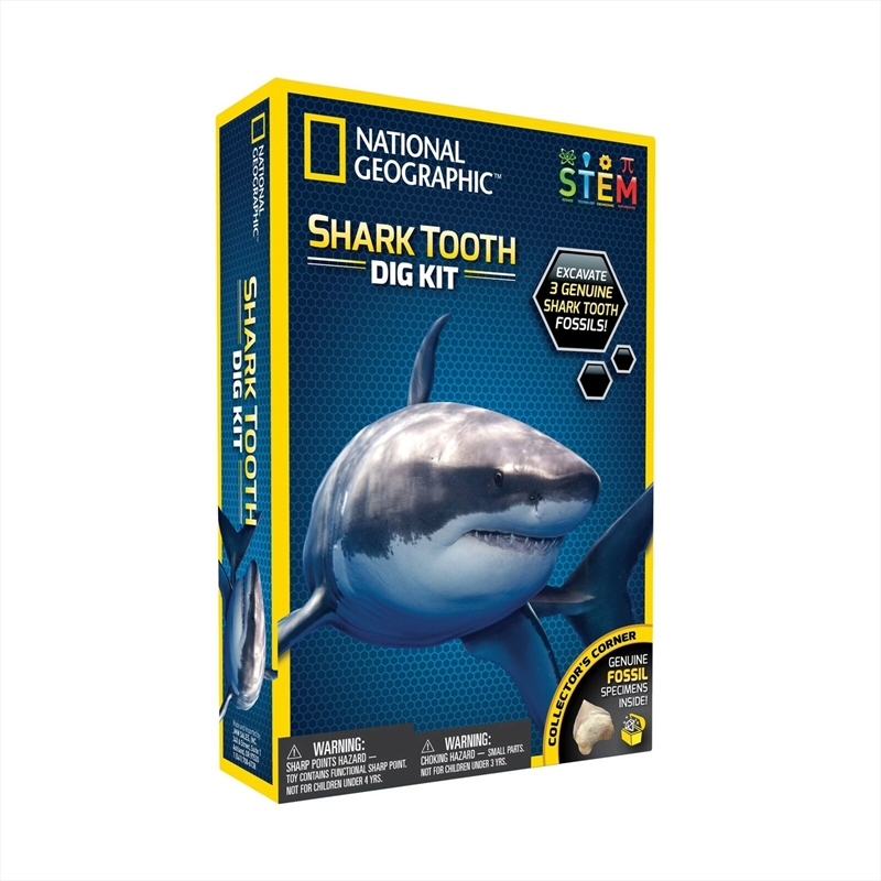 Shark Tooth Dig Kit   Toy