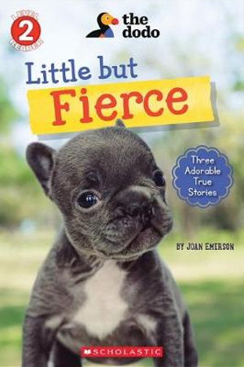 Little But Fierce: Reader #1 | Paperback Book