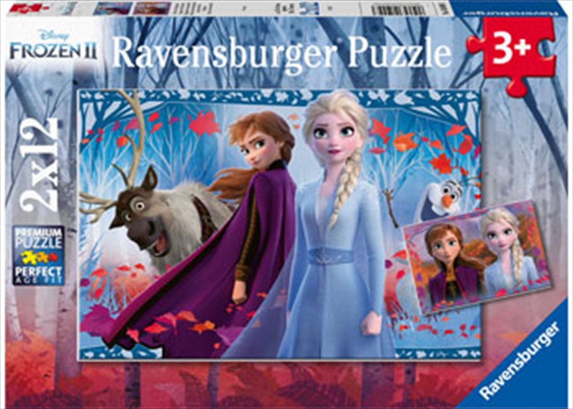 Frozen 2 Journey To The Unknown 2x12 Piece Puzzle   Merchandise