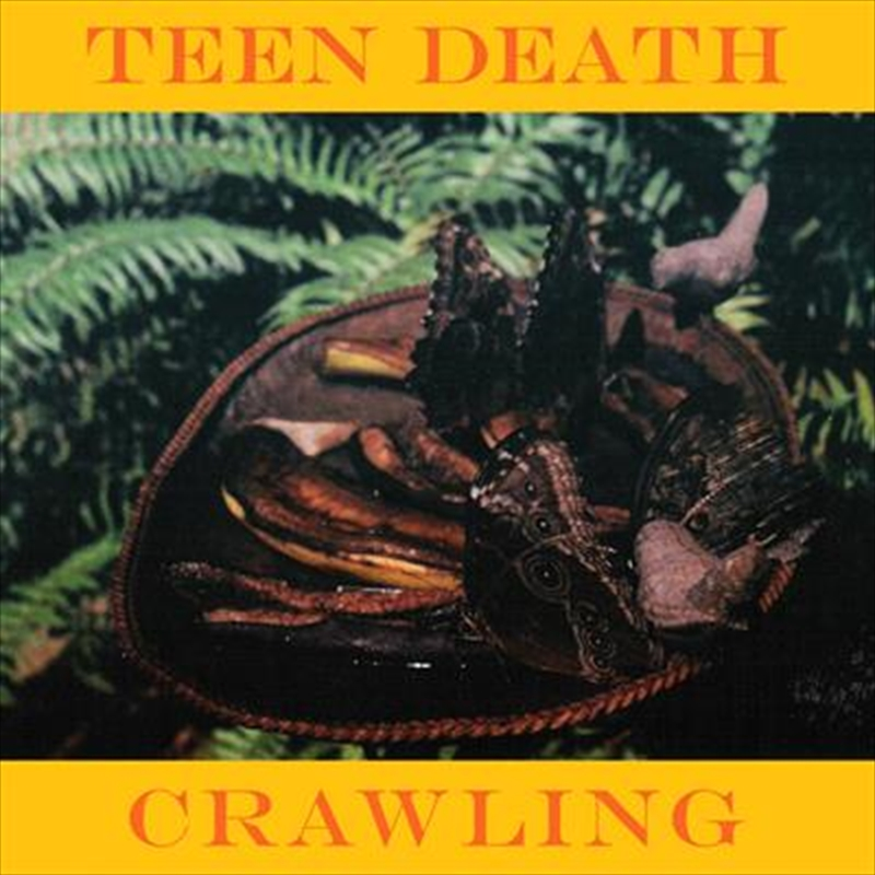 Crawling And More | Cassette