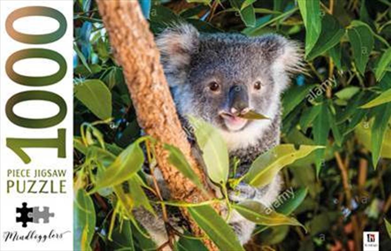 Koala Australia - Mindbogglers 1000 Piece Puzzle | Merchandise