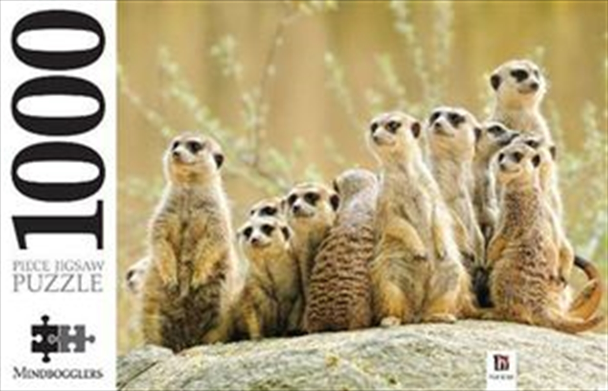 Meerkat Family 1000 Piece Puzzle | Merchandise