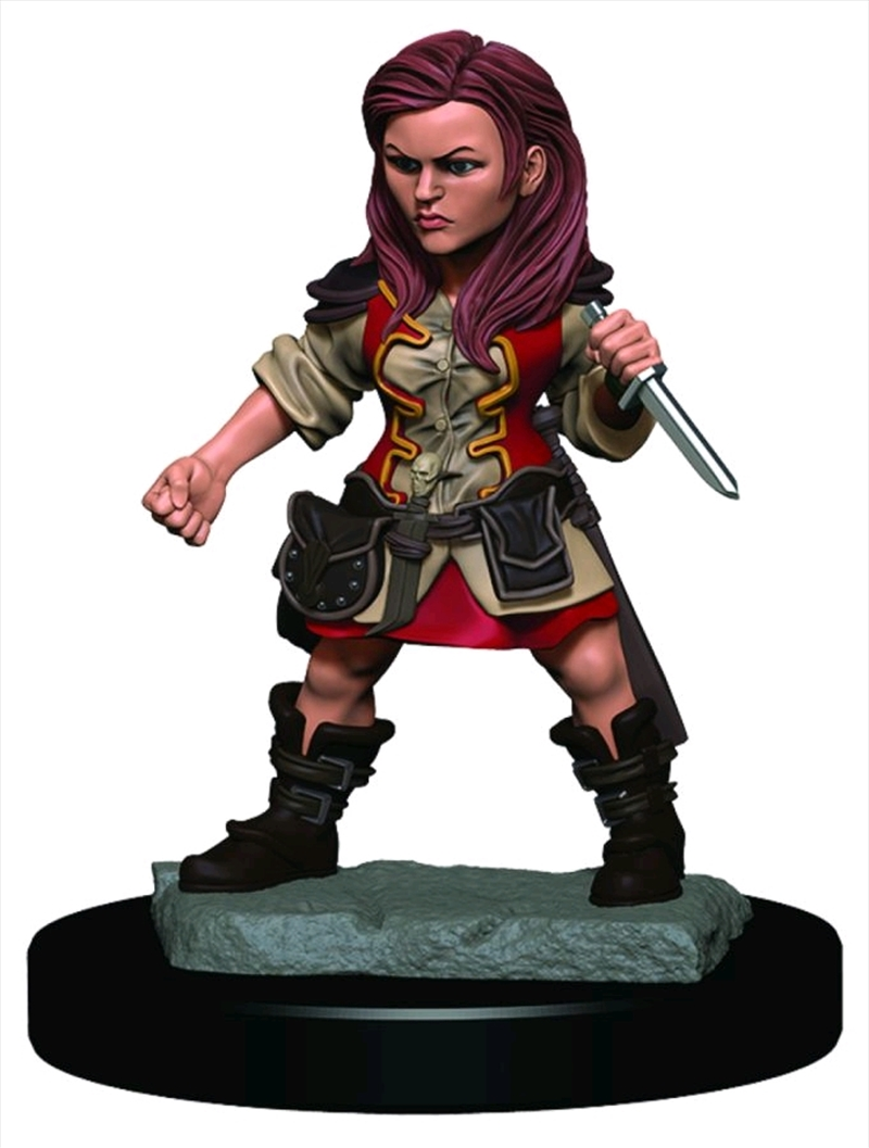 Dungeons & Dragons - Icons of the Realms Female Halfling Rogue Premium Miniature | Games