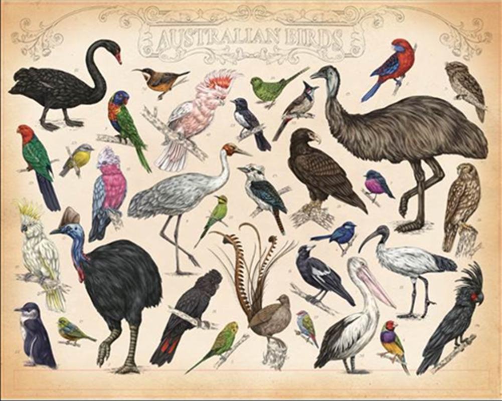 Australian Birds   Merchandise