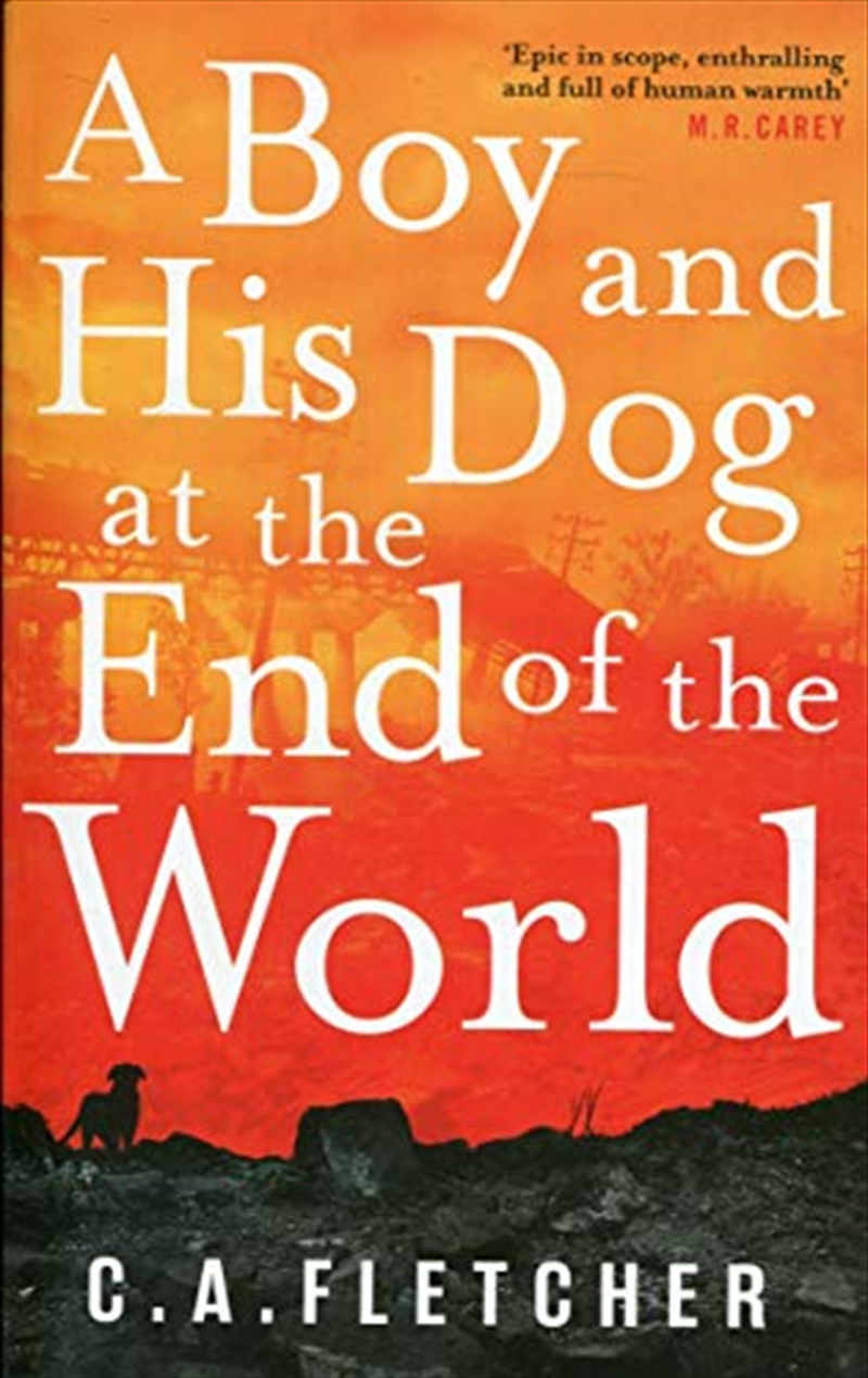 A Boy And His Dog At The End Of The World | Paperback Book
