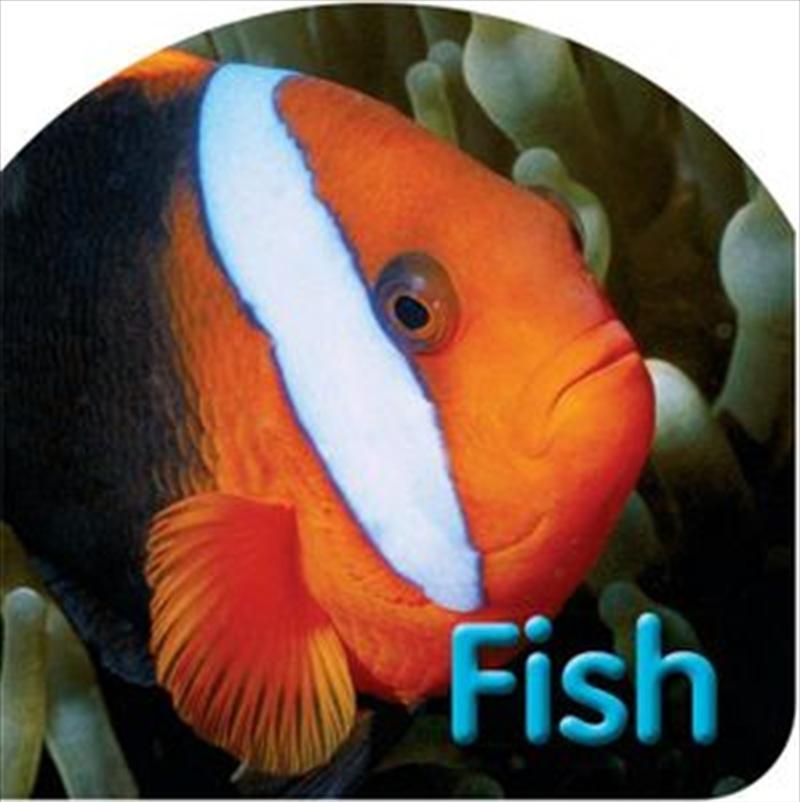 Kids Board Bk Fish | Board Book