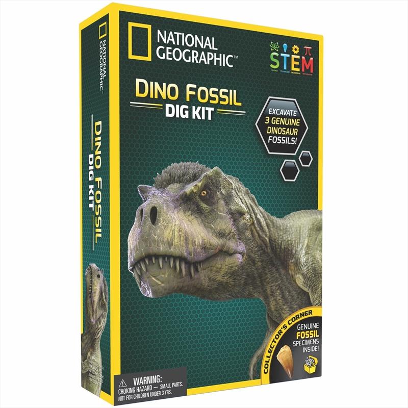 Dinosaur Dig Kit | Toy