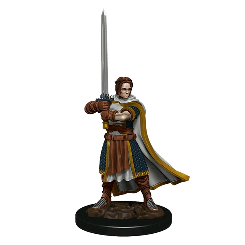 Dungeons & Dragons - Premium Human Fighter Male Miniature   Games
