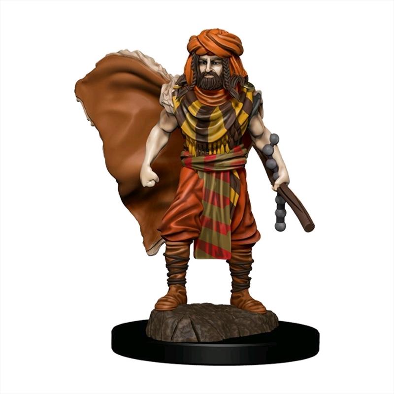 Dungeons & Dragons - Premium Human Druid Male Miniature | Games