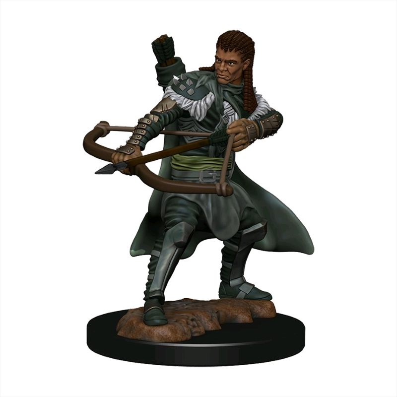 Dungeons & Dragons - Premium Human Ranger Male Miniature   Games