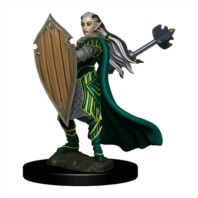 Dungeons & Dragons - Premium Elf Paladin Female Miniature   Games