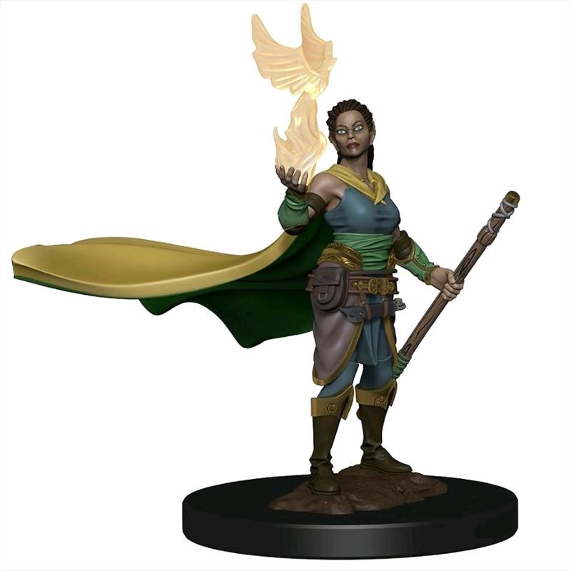 Dungeons & Dragons - Premium Elf Female Druid Miniature | Games