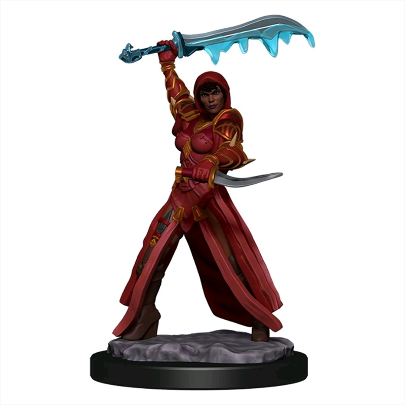 Dungeons & Dragons - Icons of the Realms Premium Human Rogue Female | Games