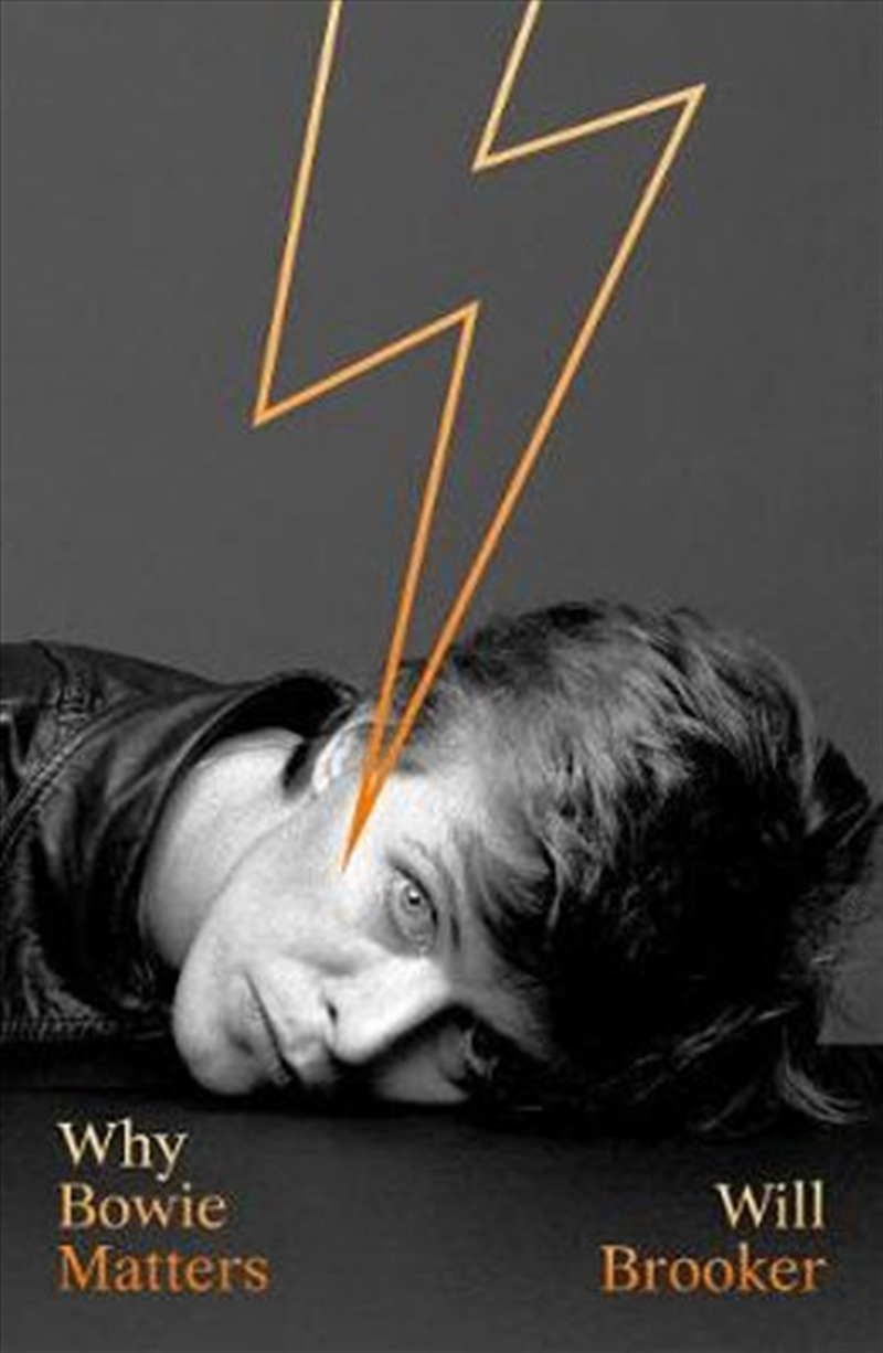Why Bowie Matters (Why Music Matters) | Hardback Book
