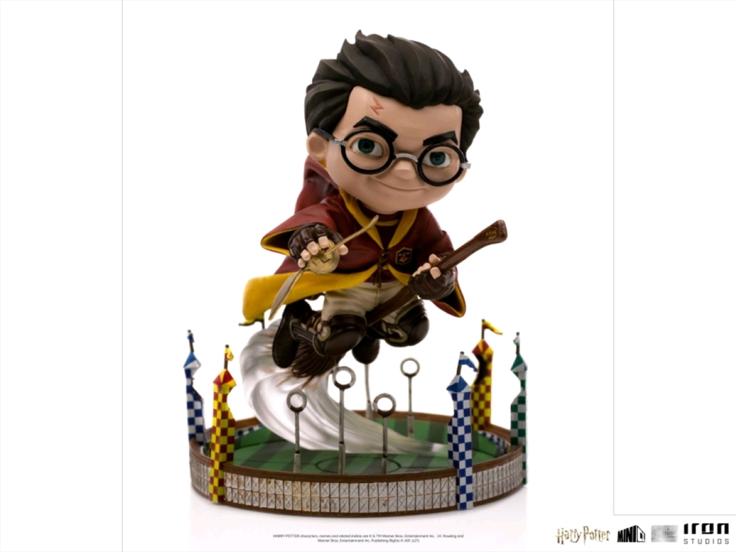 Harry Potter - At the Quidditch Match Minico Vinyl Figure   Merchandise