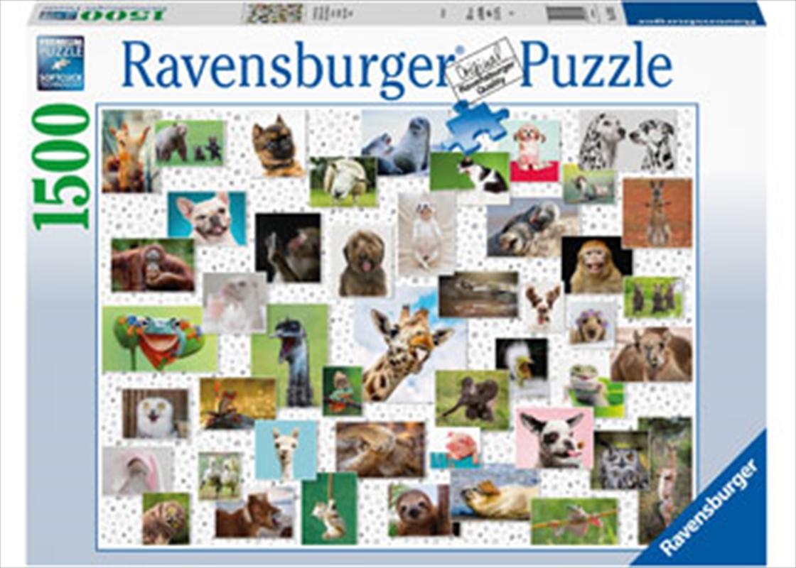 Funny Animals Puzzle 1500pc | Merchandise
