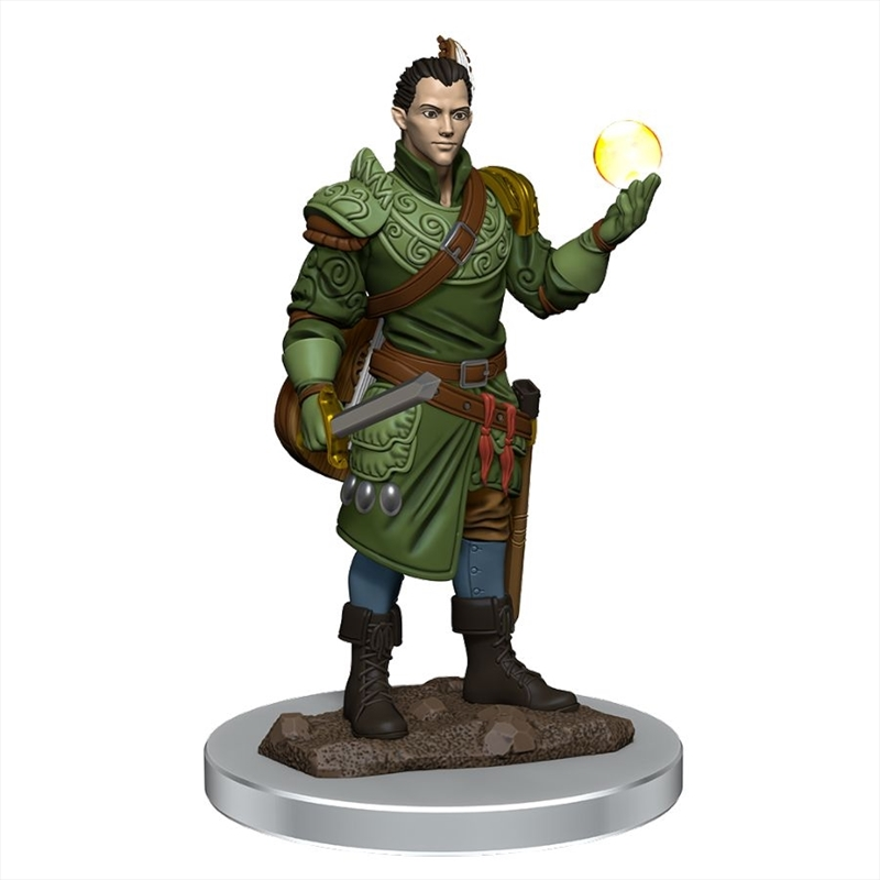 Dungeons & Dragons - Icons of the Realms Premium Male Half-Elf Bard | Games