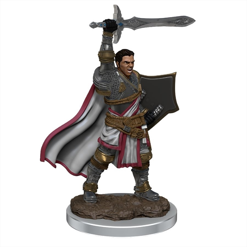Dungeons & Dragons - Icons of the Realms Premium Male Human Paladin | Games