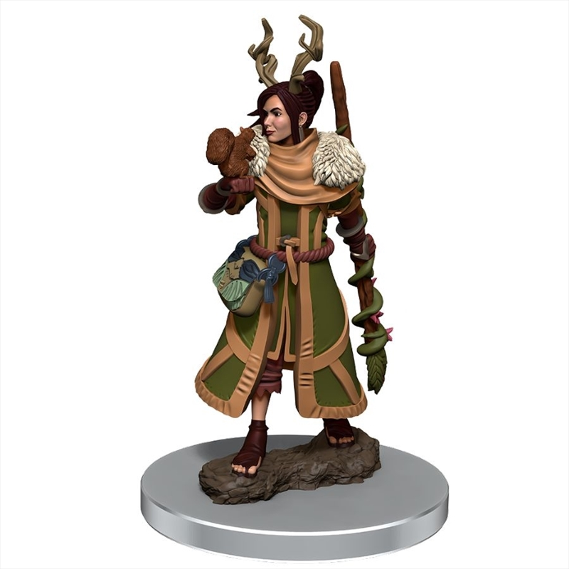 Dungeons & Dragons - Icons of the Realms Premium Female Human Druid | Games