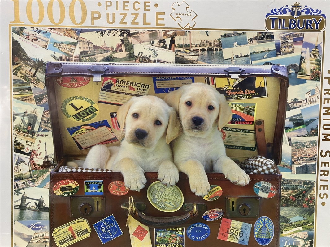 Puppies In Suitcase - 1000 Piece Puzzle | Merchandise