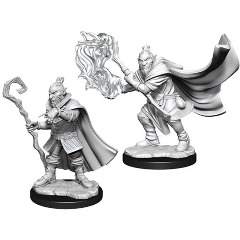 Hobgoblin Wizard And Druid U/P   Games