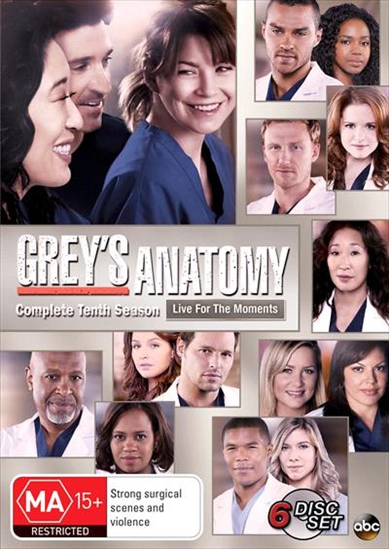 Buy Greys Anatomy Season 10 on DVD | Sanity Online
