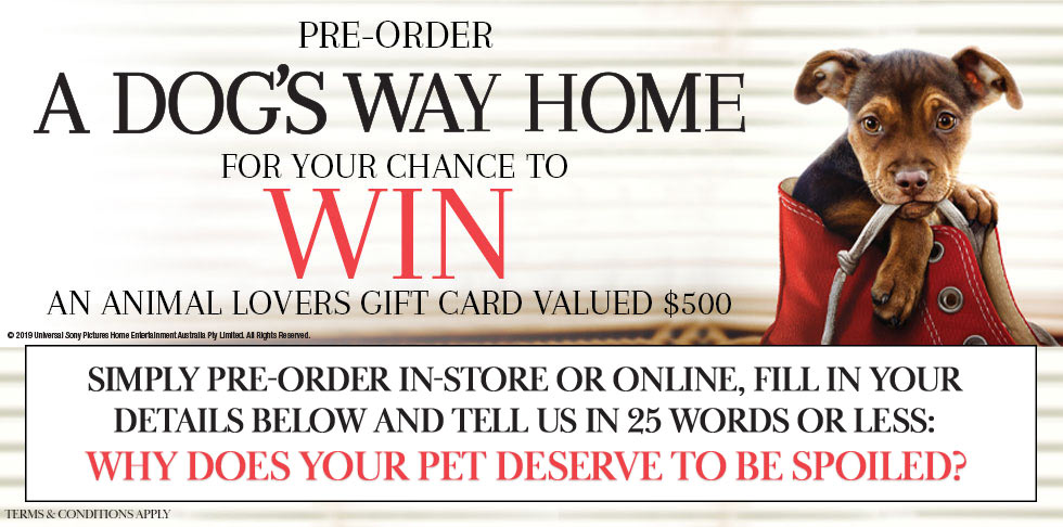 Win A $500 Gift Card To Pamper Your Pet